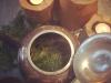 cedar-tea-ccabbb8bbe2ab606dd63c61f71c5c45abce91b26