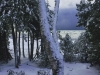 winter-watch-da3d4cd47954a4939ba1cc9518ef97caf615548b