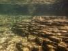 underwater3-2