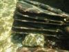 underwater3-1